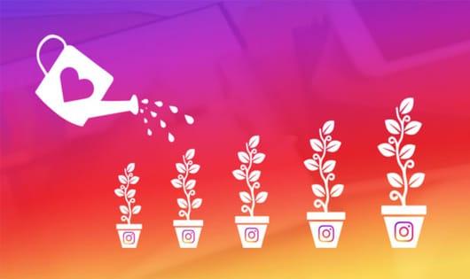 Instagram Organik Büyüme Rehberi [Instagram Seo]