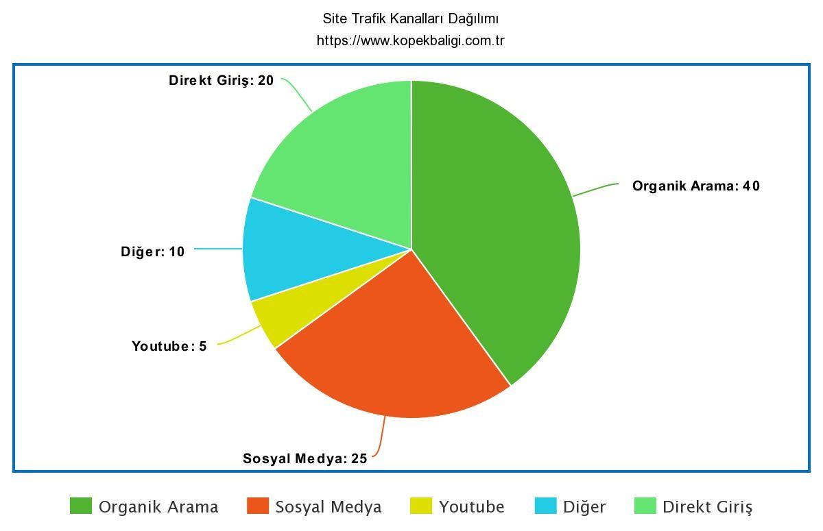 Web site trafik kanalları dağılımı